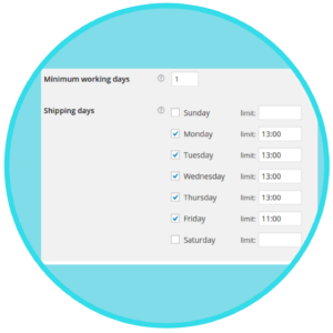 WooCommerce Order Delivery Date Plugin