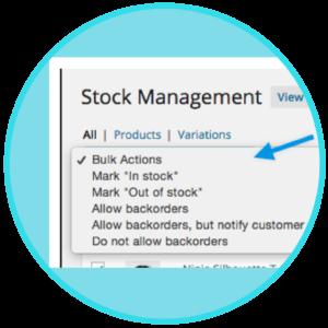 WooCommerce Bulk Stock Management Download