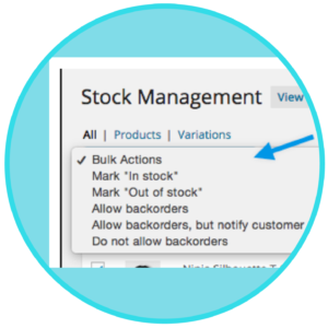 WooCommerce Bulk Stock Management Download