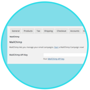 WooCommerce-MailChimp-Integration
