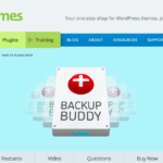 ithemes-backupbuddy